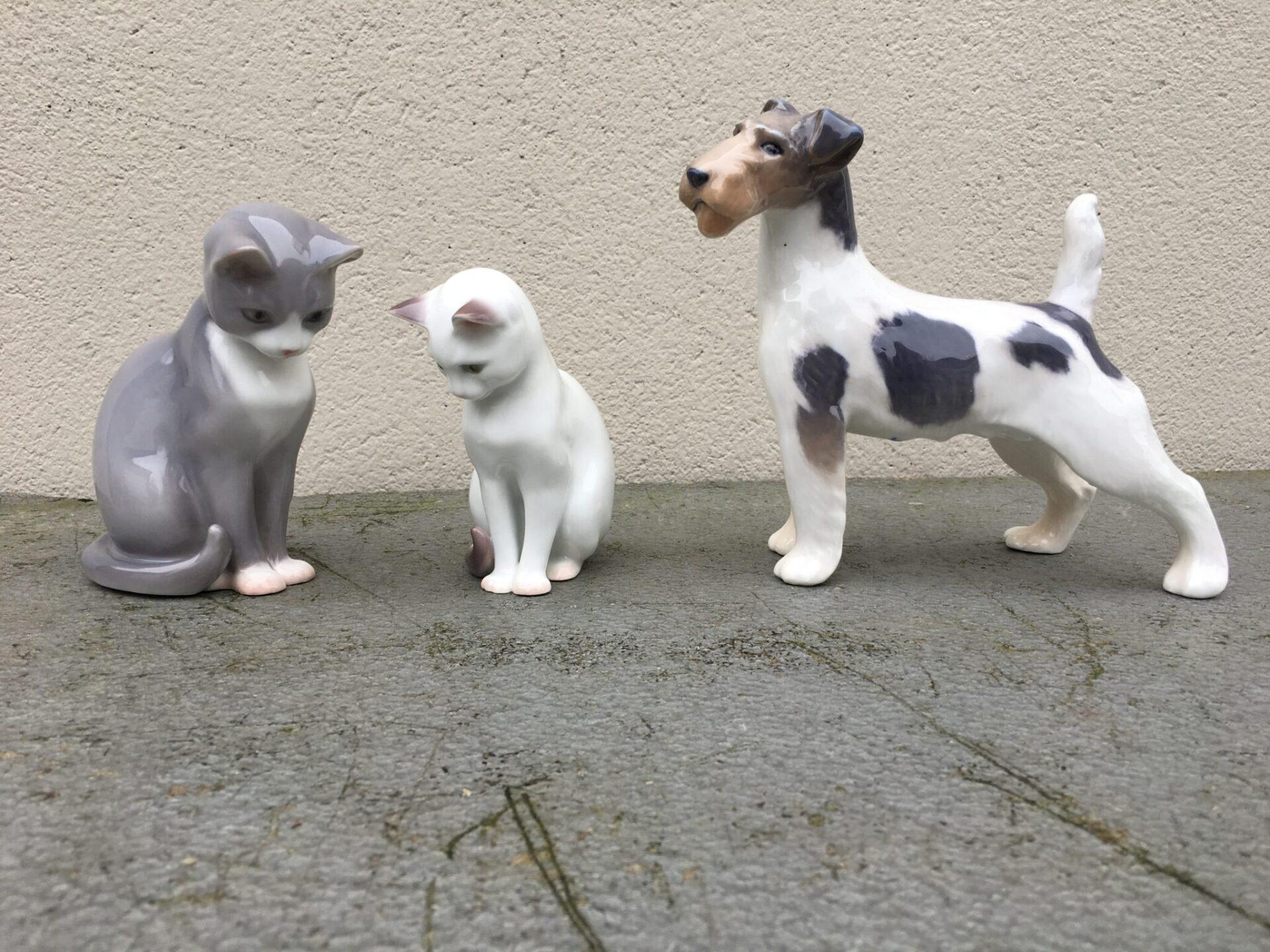 B&G Katte pr. stk 400 kr. Kgl. porcelæn Ruhåret terrier 400 kr