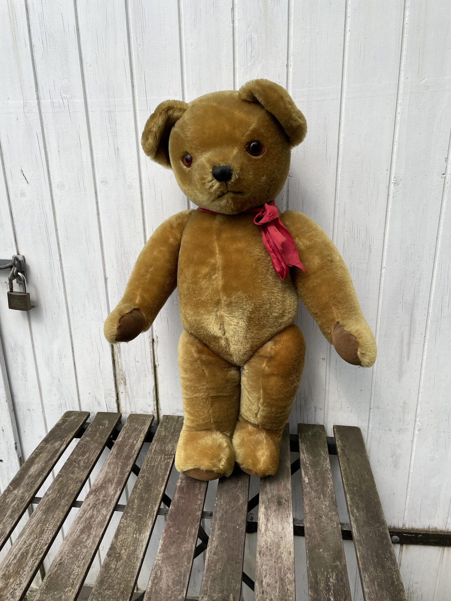 Stor Teddy bear, årg. ca 1955. H= 75 cm, Indsyet klokker i ørerne, antageligt Hermann. Pris 1000kr
